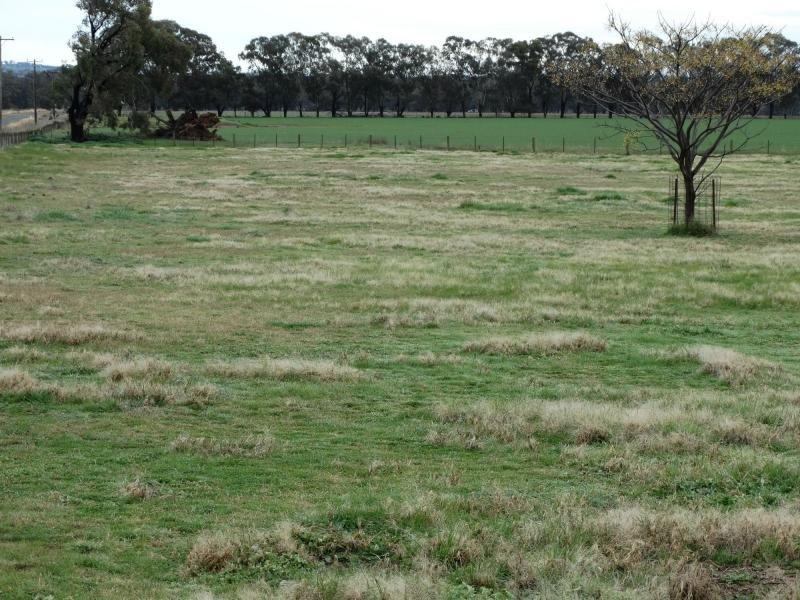 133 Jennings Road, Culcairn, NSW 2660