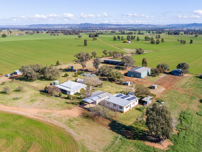 104  SELECTION ROAD, Cowra, NSW 2794