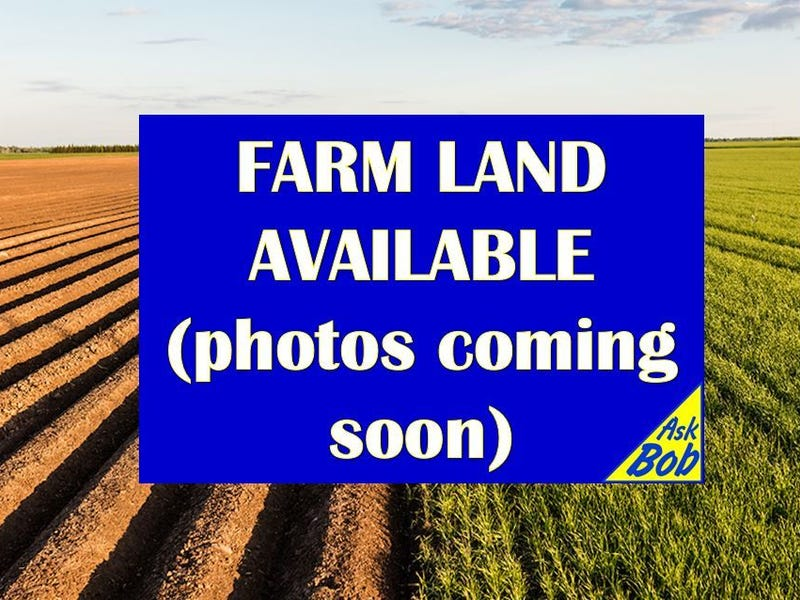* Nambling Rd South, Dowerin, WA 6461