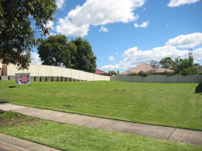 17 Coachwood Drive, Warabrook, NSW 2304