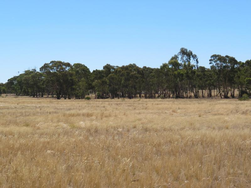 CA 52B Sec 4 Old Boort Road, Woolshed Flat, Vic 3518