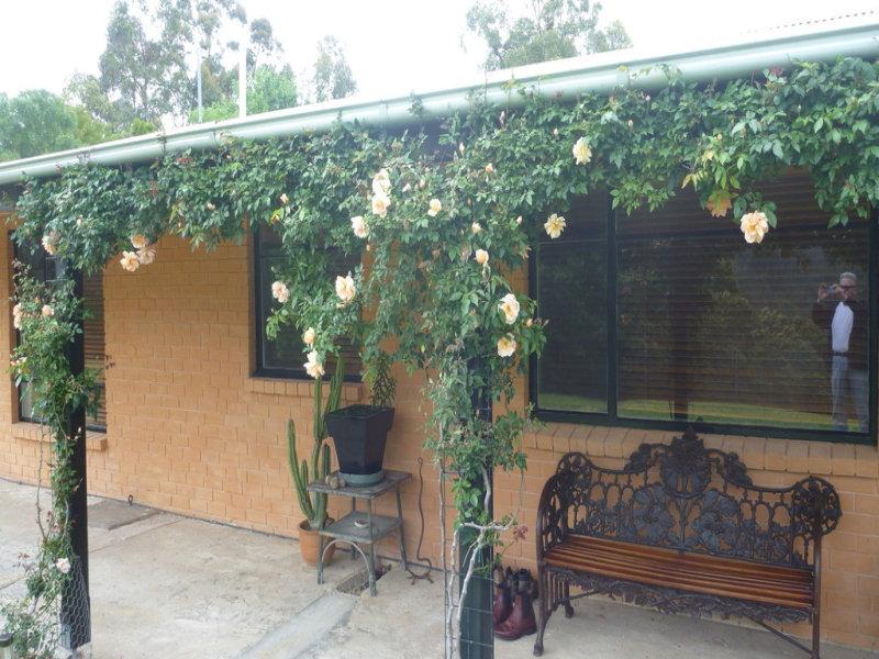 210 Burragate Rd, Burragate, NSW 2550