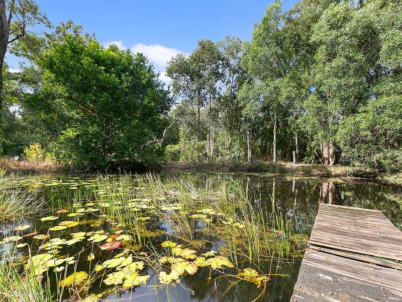 23 Tronson Road, Ringtail Creek, Qld 4565