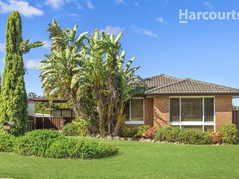 10 Cabernet Avenue, Eschol Park, NSW 2558