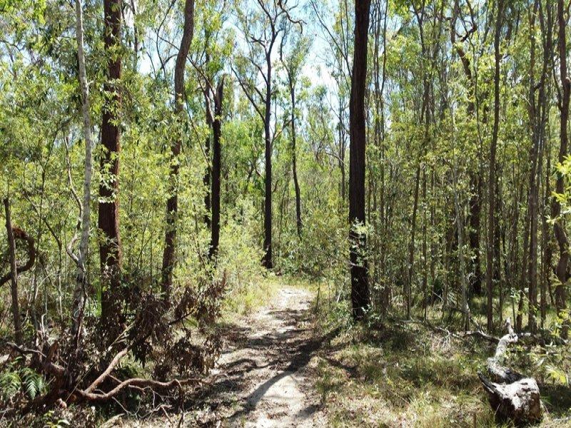 Lot 7 Rogan Bridge Road, Copmanhurst, NSW 2460