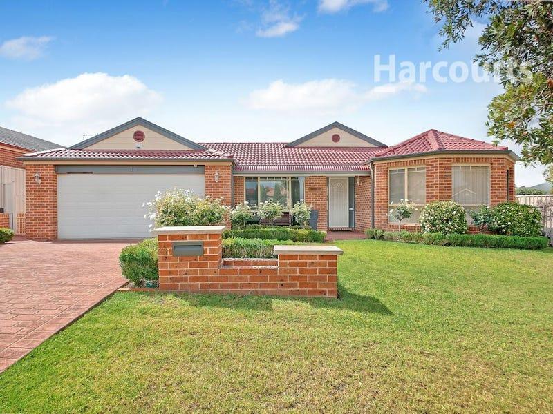 4 Dianella Place, Mount Annan, NSW 2567