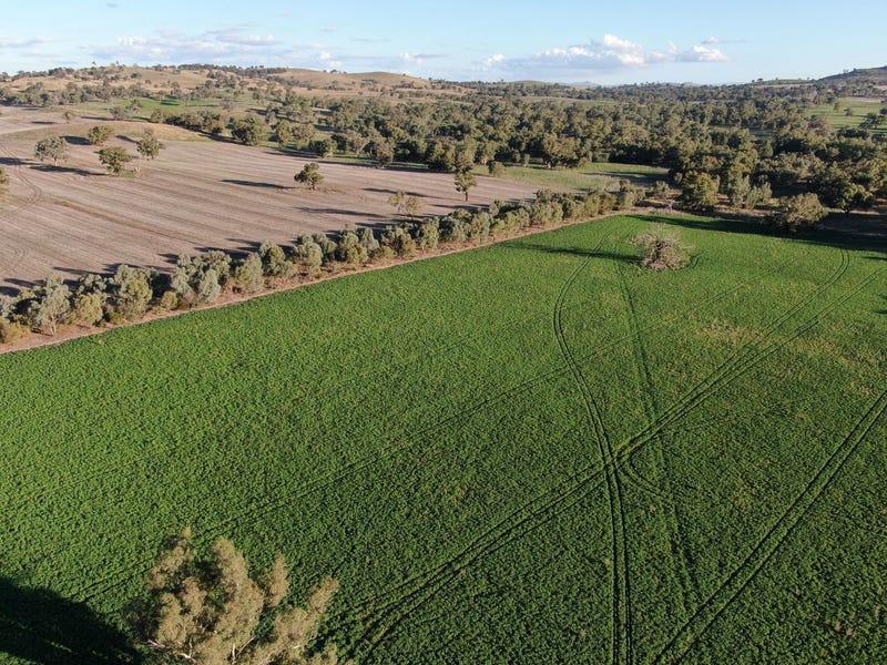 342 Eubindal Road, Galong, NSW 2585