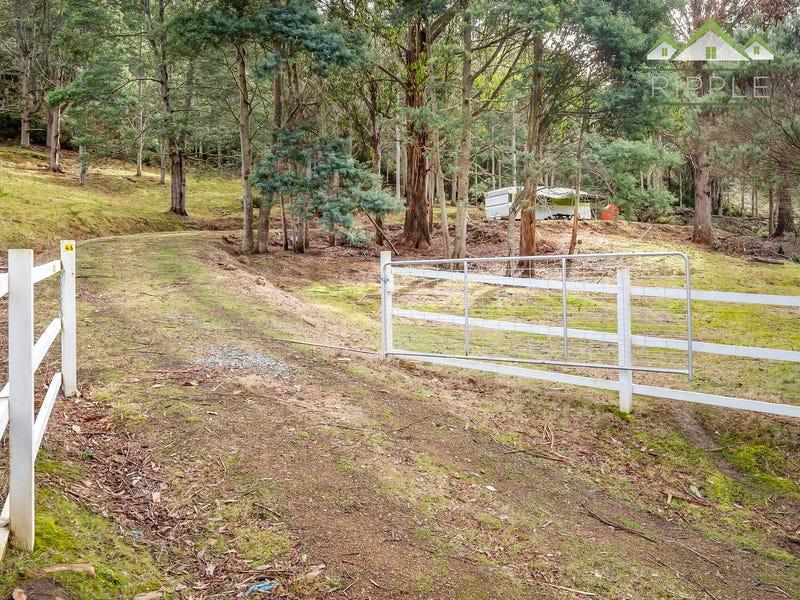 46 Robertson Road, Lachlan, Tas 7140