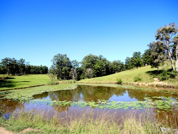 115 West Frazers Creek Road, Frazers Creek, NSW 2446