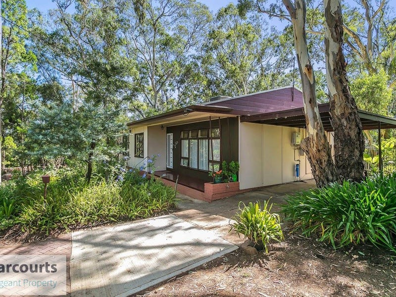 53 Bowen Road, Tea Tree Gully, SA 5091