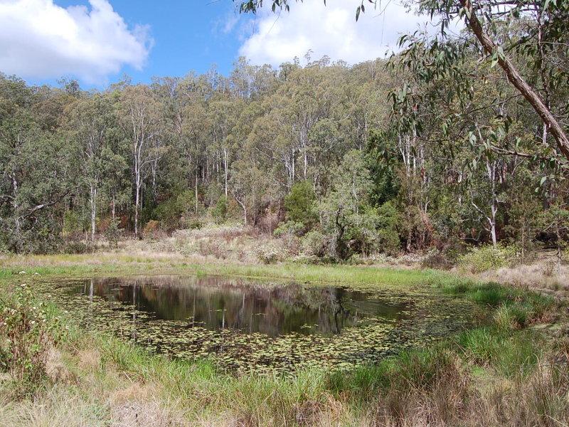 Lot 101 Duck Creek Road, Old Bonalbo, NSW 2469