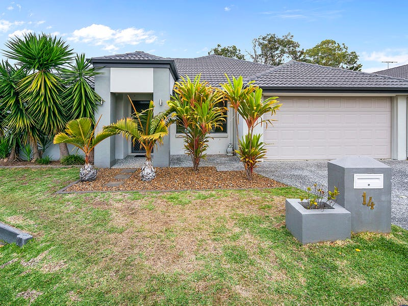 14 Mcmullan Close, Gumdale, Qld 4154