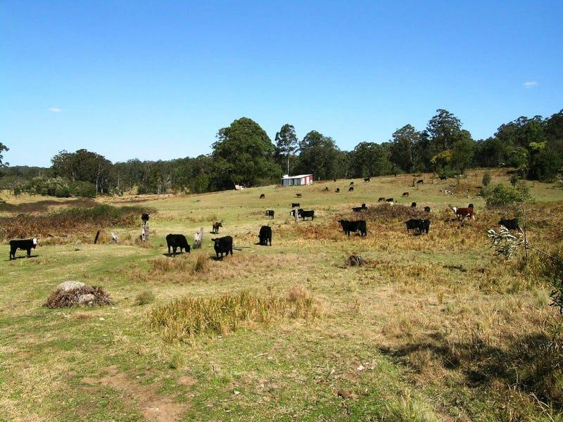 1732-1792 Cochrane Firetrail, Carrai, NSW 2440