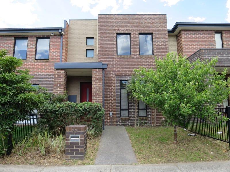 77 Rosebank Avenue, Clayton, Vic 3168
