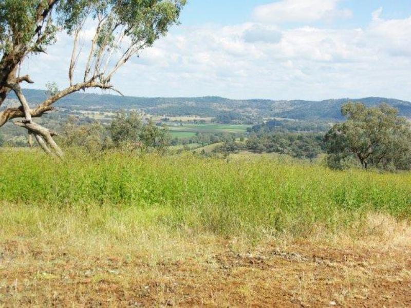 324 Dripstone Road, Neurea, NSW 2820
