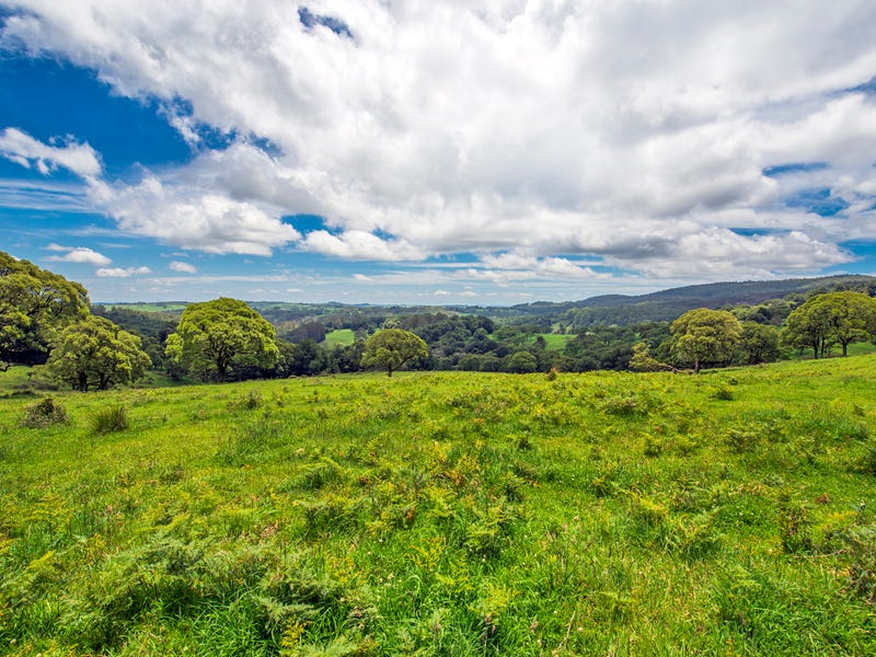 Lot 147 Redlands Road, Hernani, Dorrigo, NSW 2453