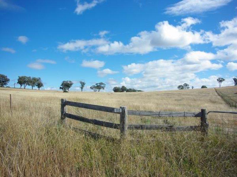 112 Tarrawingee Road, Mumbil, NSW 2820