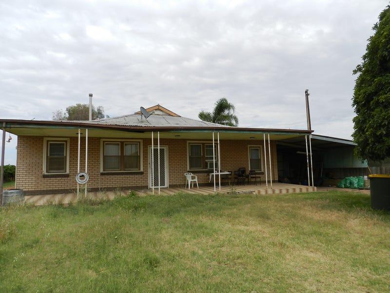 278 Kingston Road, Moorook, SA 5332