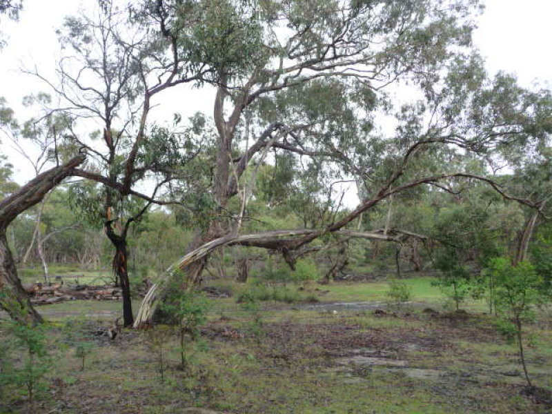 Lot 5 McAdams Rd. Mooralla via, Cavendish, Vic 3314