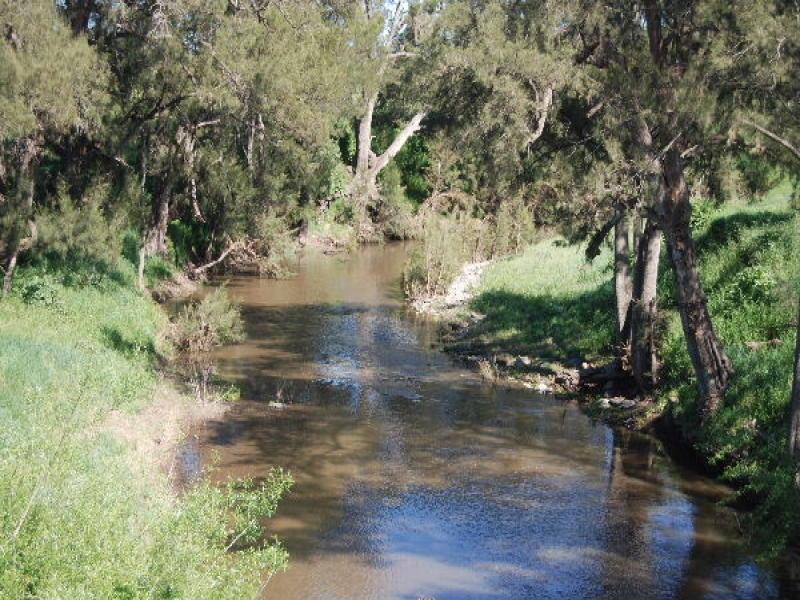 * Boomey Stud  Bell River Block - Euchareena Road, Molong, NSW 2866