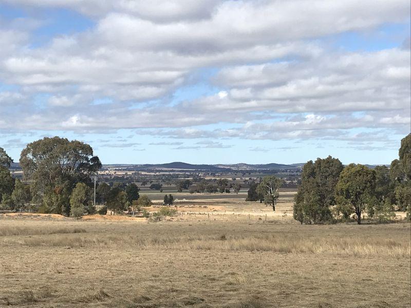 502 Patrick Road, Dunedoo, NSW 2844