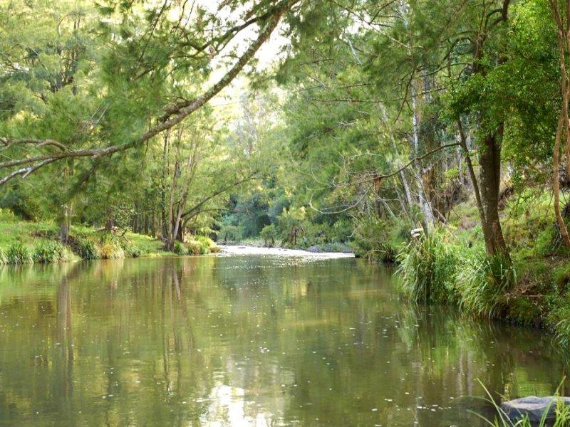 1962 Allyn River Road, Gresford, NSW 2311
