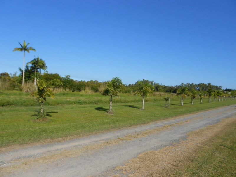 Lot 11 LOUIS Rd, South Innisfail, Qld 4860
