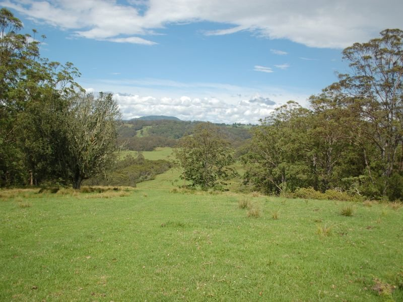 GANGARA Neaves Rd Deer Vale, Dorrigo, NSW 2453