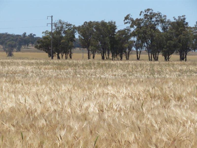 EULINE, GOLDFIELDS WAY, Wyalong, NSW 2671