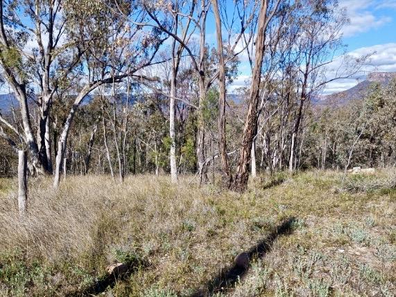 86 Pinegrove Rd, Capertee, NSW 2846