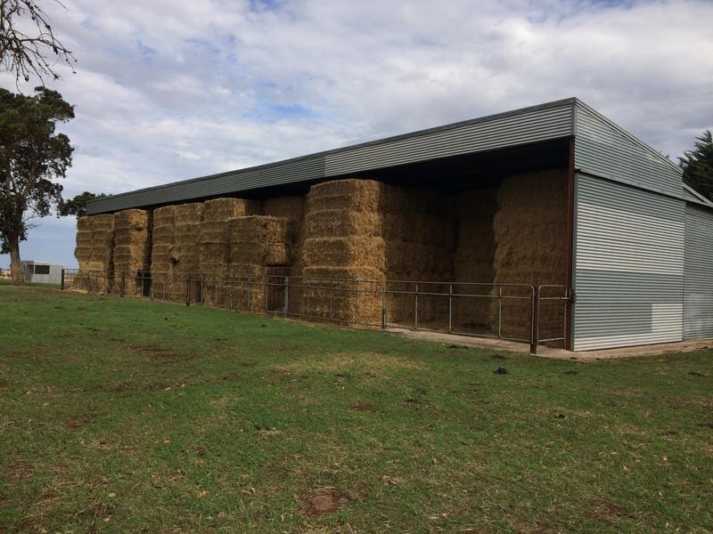 303 acres springfield lane, Penshurst, Vic 3289