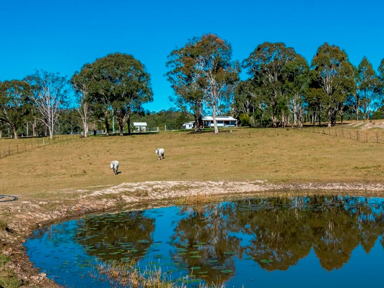 207 Laytons Range Road, Nymboida, NSW 2460
