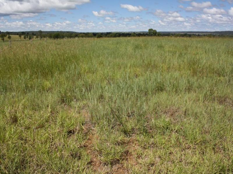 Lot 4 North Pattens Road, Mundubbera, Qld 4626