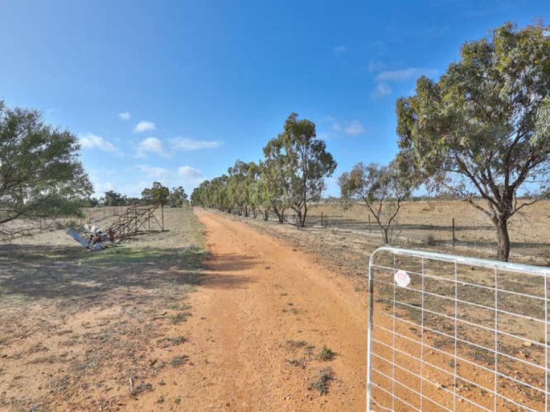 546A Lower Darling Road, Pomona, NSW 2648