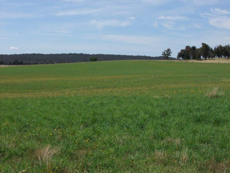 90 Sunset Hills Road, Blayney, NSW 2799