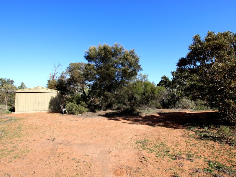 25 Old Sturt Highway, Berri, SA 5343