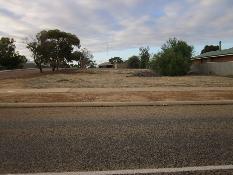 L29 Goldfields Road, Dowerin, WA 6461