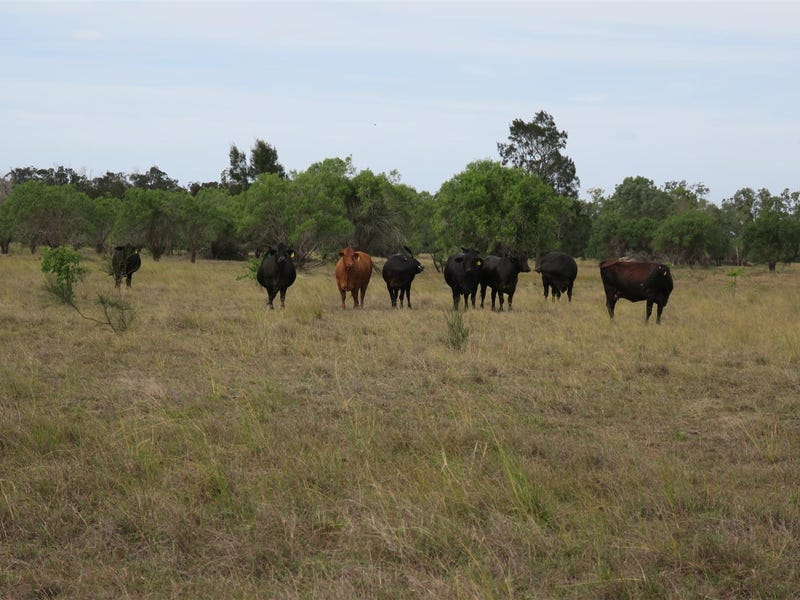 Lot 29 Lanyon Road, South Yaamba, Qld 4702