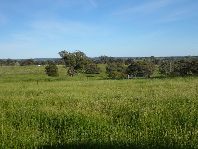Address available on request, Coonabarabran, NSW 2357