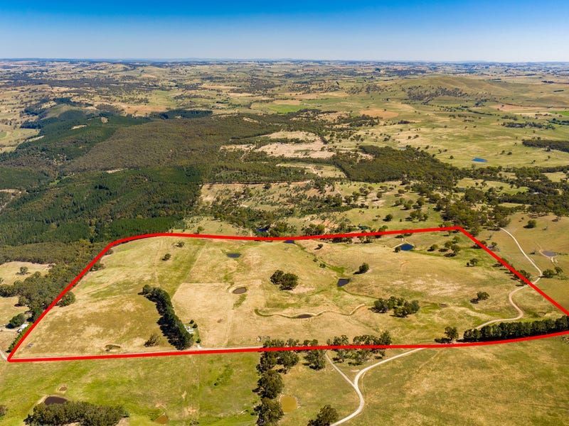 113 Kellys Road, Fitzgeralds Mount, NSW 2799