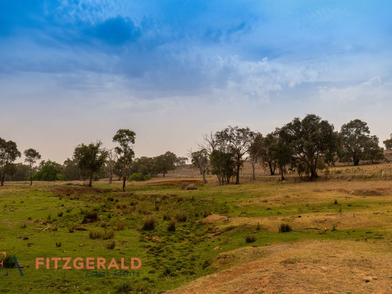 1179 Peabody Road, Molong, NSW 2866