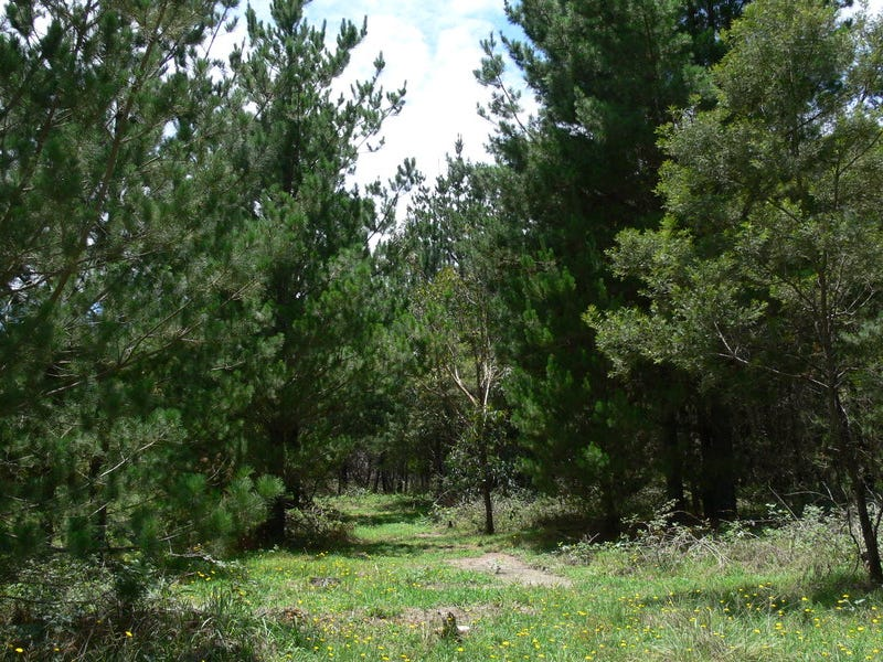 Lot 233, Central Road, Sugarloaf, Qld 4380