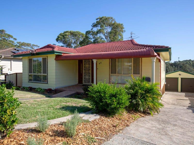 55  Alister Street, Shortland, NSW 2307