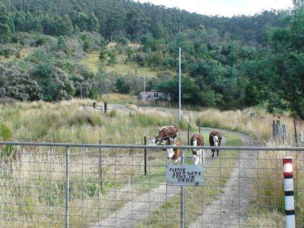 1 Andrewartha Road, Raminea, Tas 7109