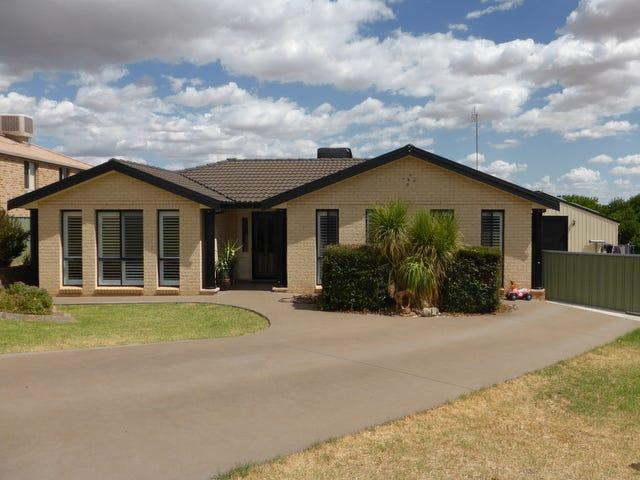 20 Glenburnie Close, Parkes, NSW 2870