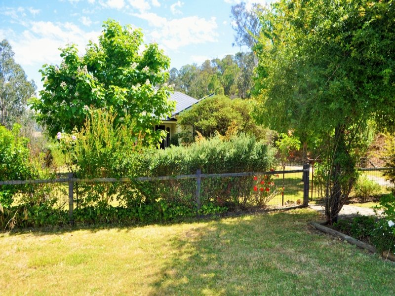 231 Scrubby Creek Road, Mitta Mitta, Vic 3701