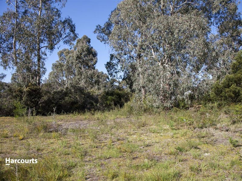 22 Flakemores Road, Eggs And Bacon Bay, Tas 7112