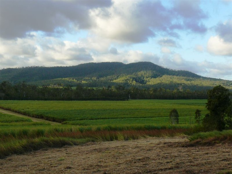 Lot 141 Mirani Mt Ossa Rd, Mirani, Qld 4754