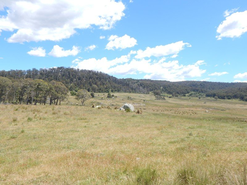 Lot 5, Tuross Road, Kybeyan, NSW 2631