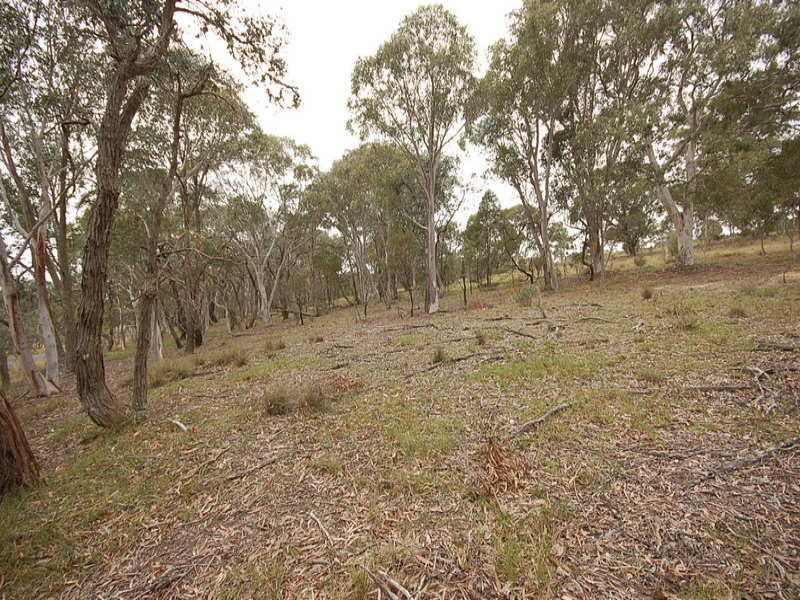 Lot 16 Hume Highway, Paddys River, NSW 2577